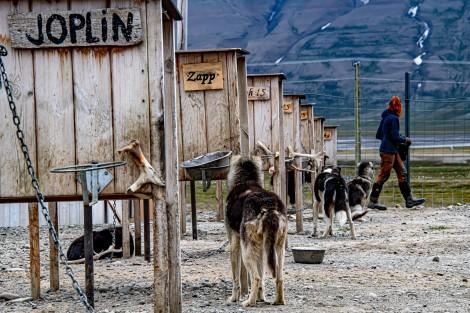 2019 TJU Hoch im Norden Svalbard-288_klein