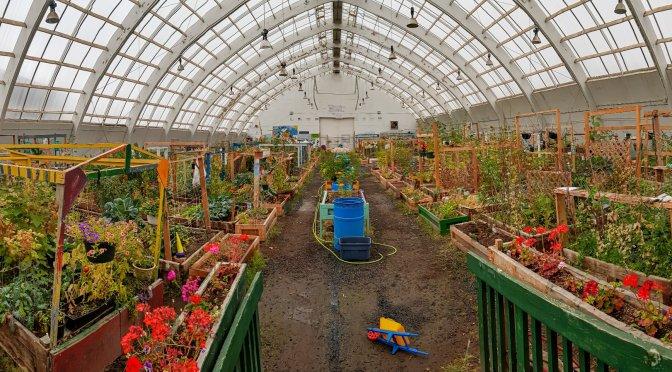 Das Greenhouse in Inuvik
